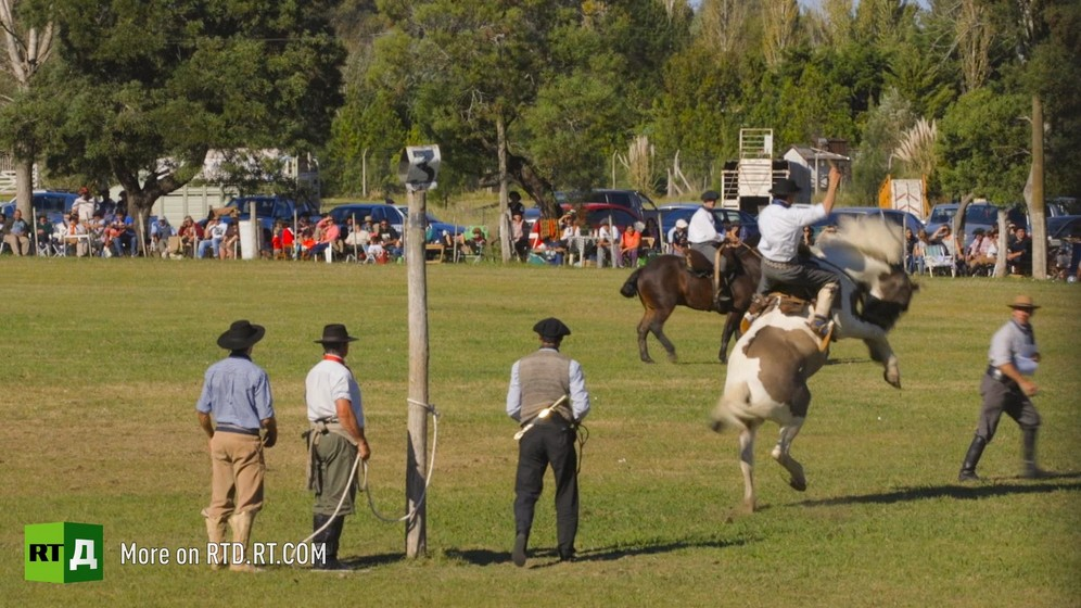 Gaucho riding bucking horse at a rodeo in rural Argentina. Still taken from RTD documentary Argentinian DNA: A Different Argentina.