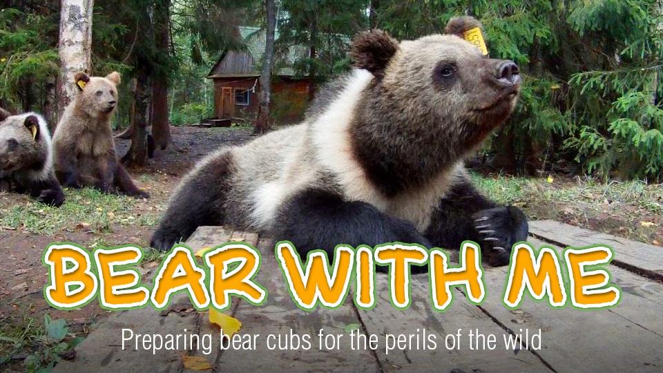 скачать игру Bear With Me торрент - фото 6