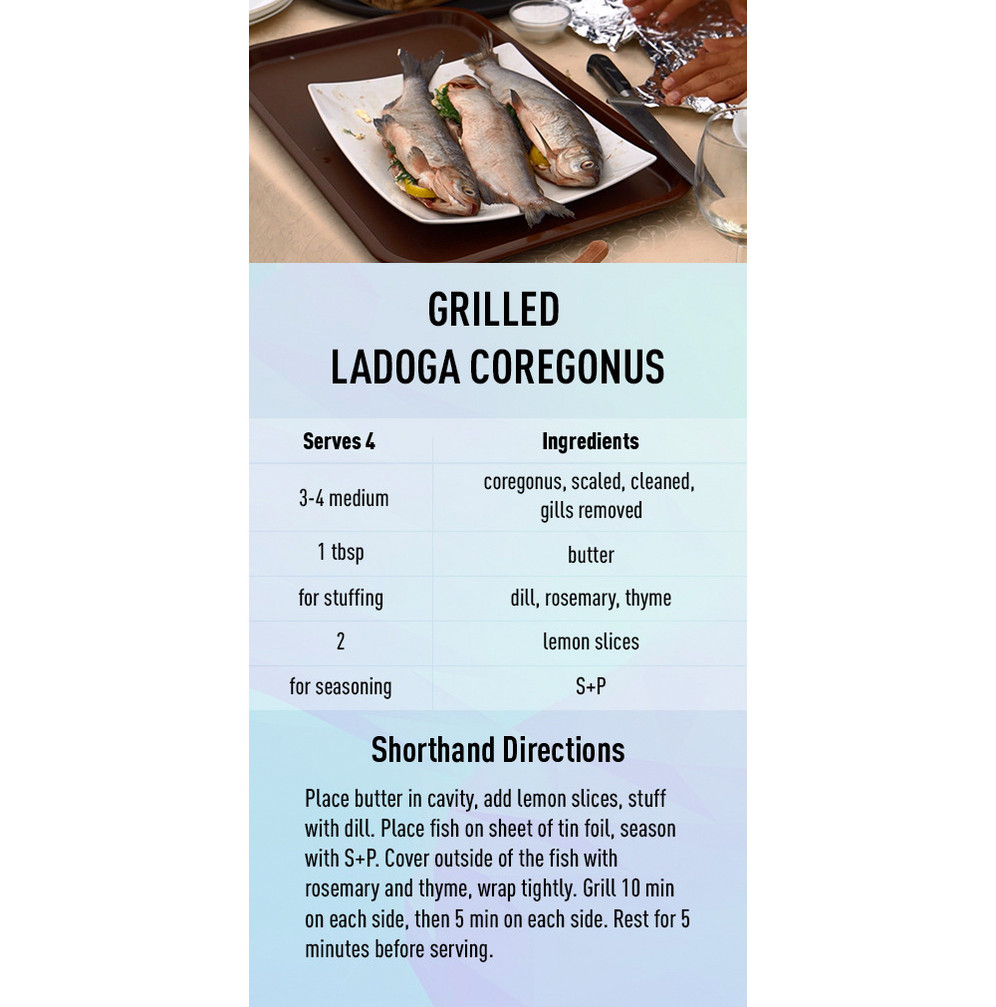 Grilled Ladoga Coregonus recipe