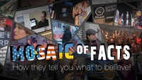Mosaic of Facts