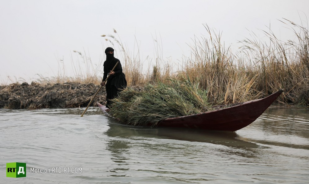 Marsh Arab steering boat in reeds of Mesopotamian marshland, Iraq. Still taken from RTD documentary Rivers of Discord: Basra's Water Crisis.