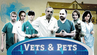 Vets & Pets. The daily life of a veterinary clinic