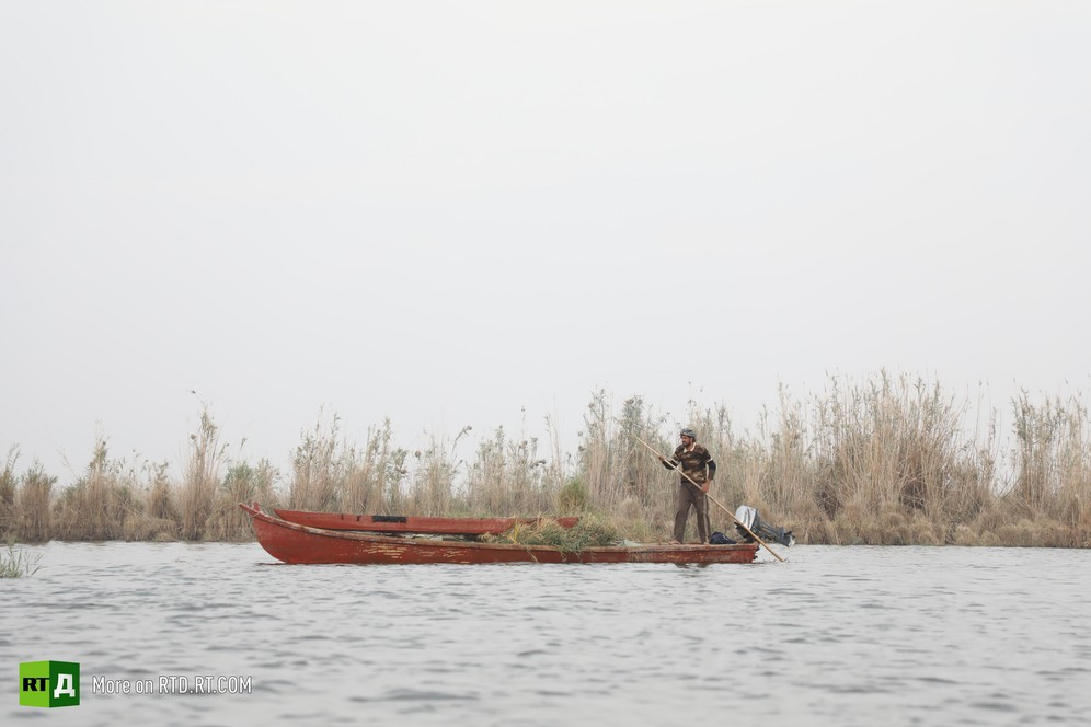 The Mesopotamian Marshes are sometimes called Iraq's